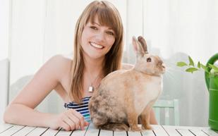 Содержание кролика в квартире - Ветбум