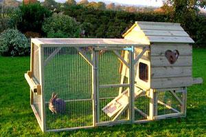 Пример устройства прогулочного места и домика для кролика на природе