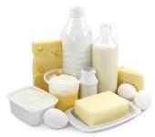 Молочные продукты и яйца важны в рационе кошки