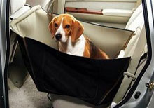 Не оставляйте животное в закрытом автомобиле, особенно в жаркую погоду