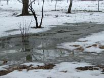 В снегу, выпадающем за зиму, содержится огромное количество тяжелых металлов и других вредных веществ