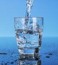 Вода - самый важный элемент в кошачьем рационе